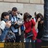 Naturpixel_Born_012