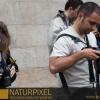 Naturpixel_Born_016