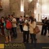 Naturpixel_Born_021