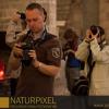 Naturpixel_Born_026