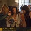 Naturpixel_Born_029