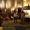 Naturpixel_Born_022