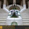 Naturpixel_Fotowalk_Guell_07_05_2011_002