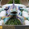 Naturpixel_Fotowalk_Guell_07_05_2011_003