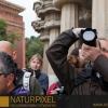Naturpixel_Fotowalk_Guell_07_05_2011_009