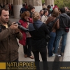 Naturpixel_Fotowalk_Guell_07_05_2011_010