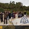 Naturpixel_Fotowalk_Guell_07_05_2011_014