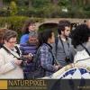 Naturpixel_Fotowalk_Guell_07_05_2011_015