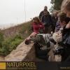 Naturpixel_Fotowalk_Guell_07_05_2011_031
