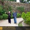 Naturpixel_Fotowalk_Guell_07_05_2011_032