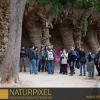 naturpixel_fotowalk_guell_07_05_2011_018