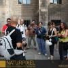 Naturpixel_FWBorn_2011-07-16_009