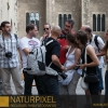 Naturpixel_FWBorn_2011-07-16_011