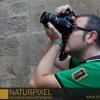 Naturpixel_FWBorn_2011-07-16_014