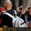 Naturpixel_FWBorn_2011-07-16_023