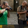 Naturpixel_FWBorn_2011-07-16_026