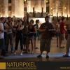 Naturpixel_FWBorn_2011-07-16_031