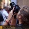 Naturpixel_FWBorn_2011-07-16_042