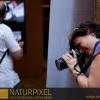 Naturpixel_FWBorn_2011-07-16_043