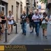 Naturpixel_Gracia_003