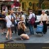 Naturpixel_Gracia_016