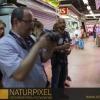 Naturpixel_Gracia_024