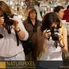 Naturpixel_Gracia_027