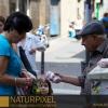 Naturpixel_Gracia_031