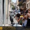 Naturpixel_Gracia_035