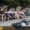 Naturpixel_Gracia_001