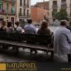 Naturpixel_Gracia_002