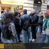 Naturpixel_Gracia_005
