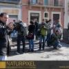 Naturpixel_Gracia_015