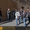 Naturpixel_Gracia_021