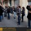Naturpixel_Gracia_032