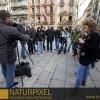 Naturpixel_Gracia_034