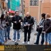 Naturpixel_Gracia_037