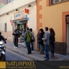 Naturpixel_Gracia_011