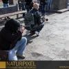 Naturpixel_Gracia_018