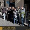 Naturpixel_Gracia_022