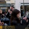 Naturpixel_Gracia_039