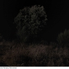 08-Paisaje-y-Naturaleza-886-3-de-4-G