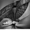 05-Arquitectura-537-G