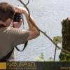 Naturpixel_Montseny_012