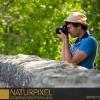 Naturpixel_Montseny_015_