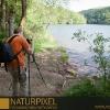 Naturpixel_Montseny_015_01