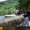 Naturpixel_Montseny_015_02