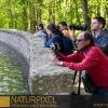 Naturpixel_Montseny_016
