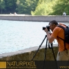 Naturpixel_Montseny_018