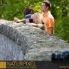 Naturpixel_Montseny_019
